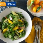 Orange Jicama Salad with Lemon Ginger Dressing