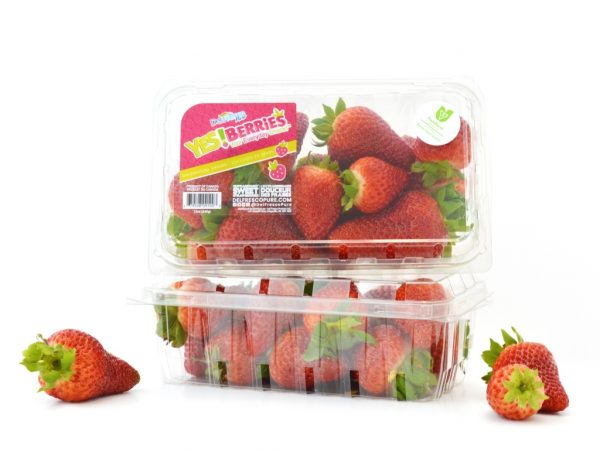 Yes Berries packaging 2019
