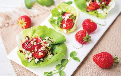 Living Cube Lettuce Wraps