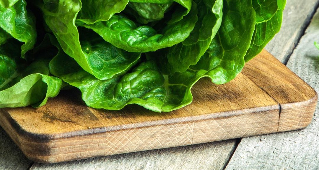 What is Living Cube Lettuce?