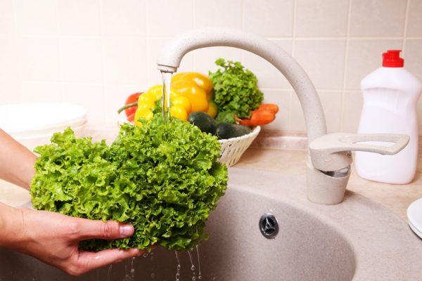 washing-lettuce